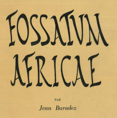 Fossatum Africae